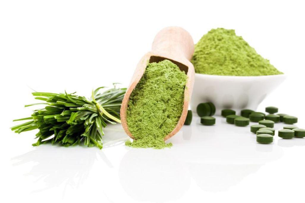 Algen als Superfood: Spirulina und Chlorella